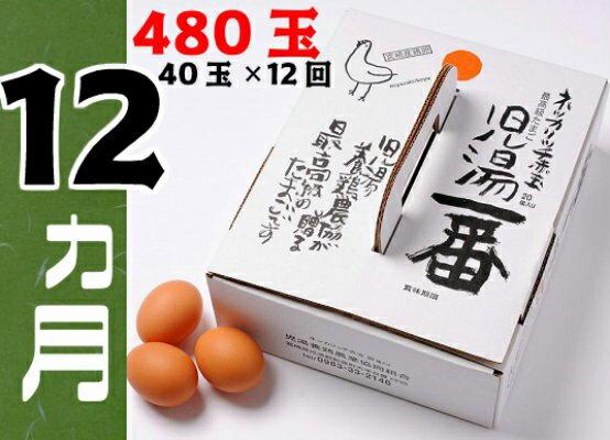 【ふるさと納税】児湯養鶏自慢の卵 計480個(40個×12回) 12ヶ月定期便 冷蔵 送料無料 たまご 国産