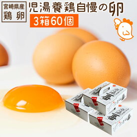 【ふるさと納税】児湯養鶏自慢の卵 ネッカリッチ赤たまご「児湯一番」3箱60個 冷蔵 送料無料 たまご 国産