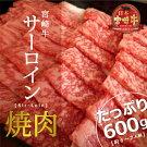 【ふるさと納税】宮崎牛サーロイン焼肉600g約6〜7人前霜降りbbq和牛牛肉送料無料