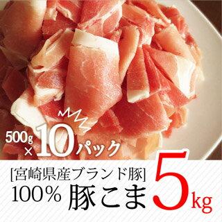 【ふるさと納税】 宮崎県産 ブランド豚 こま肉 5kg (500g×10パック) 大容量 豚肉 こま切れ 冷凍 小分け 送料無料