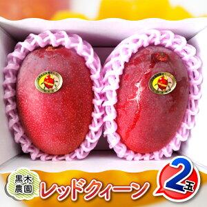 【ふるさと納税】川南町産完熟マンゴー『レッドクイーン』2L×2玉