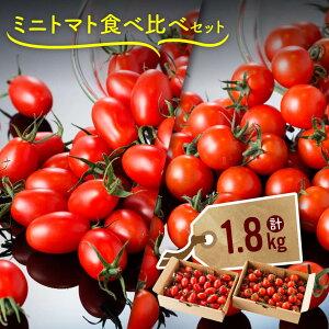 【ふるさと納税】合計1.8kg!「キャロルパッション」&「アイコ」 川南町産ミニトマトを食べ比べ! 栽培農家から直送!