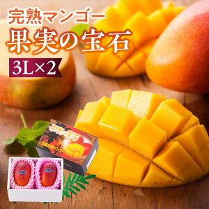 【ふるさと納税】果実の宝石マンゴー3L2玉※2020年初夏〜夏発送※