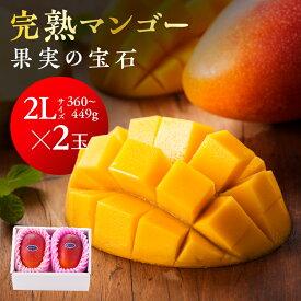 【ふるさと納税】果実の宝石マンゴー2L2玉※2020年初夏〜夏発送※