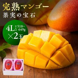【ふるさと納税】マンゴー 完熟マンゴー※糖度15度以上※『果実の宝石』4L×2玉※2021年初夏〜夏発送※