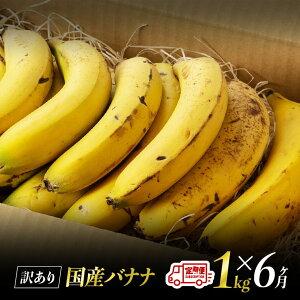 【ふるさと納税】【訳あり】国産バナナ1kg 6ヶ月定期便 ご自宅用や皮ごとスムージーにもオススメ!
