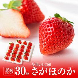 【ふるさと納税】※令和2年発送※宮崎県産いちご!さがほのか約350g×2パック!人気のイチゴ