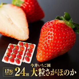【ふるさと納税】※令和3年発送※宮崎県産いちご!「大粒」さがほのか12粒×2パック!人気のイチゴ