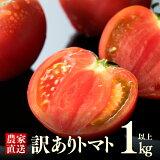 【ふるさと納税】「訳ありトマト」1kg