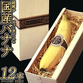 【ふるさと納税】テレビで話題のバナナ!※7月発送分※ そのままガブリ!皮まで食べられるバナナ「NEXT716」12本入り 生産者こだわりの逸品(ラージサイズ180g超/本)