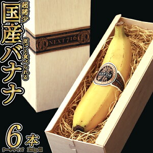 【ふるさと納税】テレビで話題のバナナ!そのままガブリ!皮まで食べられるバナナ「NEXT716」6本入り 生産者こだわりの逸品(ラージサイズ:180g超/本)
