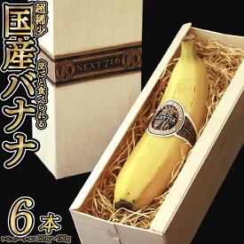 【ふるさと納税】そのままガブリ!皮まで食べられるバナナ「NEXT716」6本入り 生産者こだわりの逸品(レギュラーサイズ:120g〜180g)
