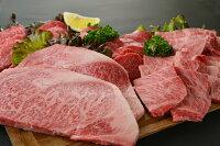 【ふるさと納税】宮崎牛ロースステーキ&焼肉セット