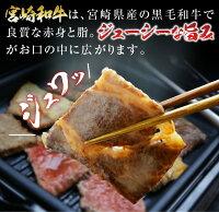 【ふるさと納税】宮崎和牛・宮崎県産豚焼肉セット