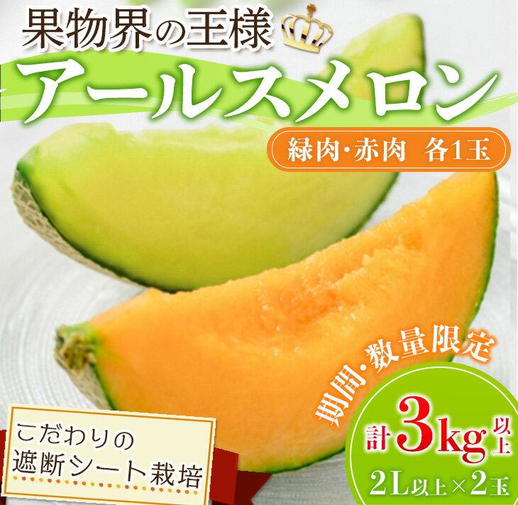 【ふるさと納税】☆大地の恵み☆アールスメロン(赤肉・緑肉)3L以上×2玉
