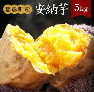 【ふるさと納税】安納芋5kg(都農町産)