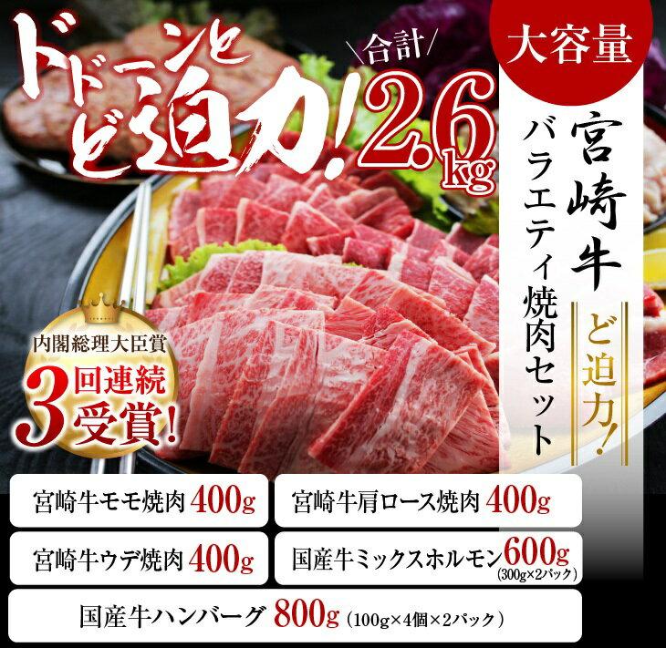 【ふるさと納税】★ど迫力★宮崎牛バラエティ焼肉セット(合計2.6kg)