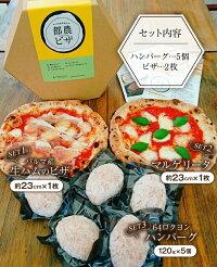 【ふるさと納税】☆薪窯ナポリピザとハンバーグのセット