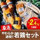 【ふるさと納税】やわらか満喫!!若鶏セット(計2.4kg)