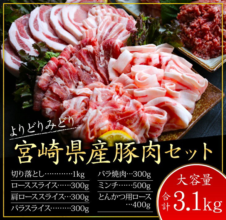 【ふるさと納税】『豚肉の宝石箱〜★』よりどりみどり宮崎県産豚肉セット(合計3.1kg)