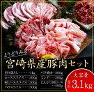 【ふるさと納税】よりどりみどり宮崎県産豚肉セット