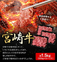 【ふるさと納税】(内閣総理大臣賞受賞記念)宮崎牛切落し(焼肉)2.2kg