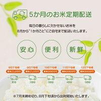 【ふるさと納税】宮崎県産新米・無洗米《定期便》(10kg×5回)