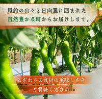 【ふるさと納税】《期間・数量限定》島田梅園の『とうがらしセット』約500g
