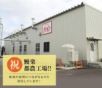 【ふるさと納税】うなぎ蒲焼5尾(計800g以上)国産都農町加工品