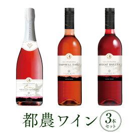 【ふるさと納税】★都農ワインセレクト3本セット