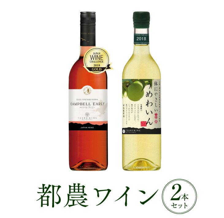 【ふるさと納税】ヘルシー!!うれしー!!ロゼ&うめわいん 2本セット(都農ワイン)
