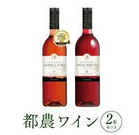 【ふるさと納税】都農ワインワイナリー1番人気の定番(ロゼ&赤)2本セット