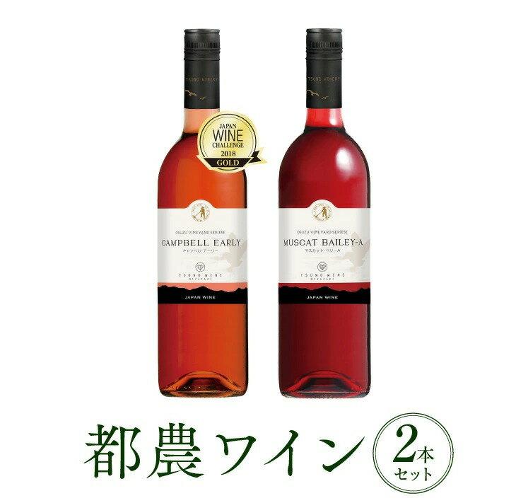 【ふるさと納税】人気の定番!!ロゼ&赤2本セット(都農ワイン)