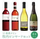 【ふるさと納税】都農ワイン『ビンヤードシリーズ』4本セット