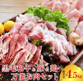 【ふるさと納税】〈黒毛和牛&豚&鶏〉万能お肉セット(総重量4.5kg)