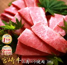 【ふるさと納税】宮崎牛特上カルビ(三角バラ)焼肉500g
