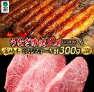 【ふるさと納税】うなぎ蒲焼2尾&宮崎牛ミスジステーキ3枚セット