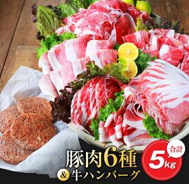 【ふるさと納税】お楽しみ『豚肉6種&牛ハンバーグセット』合計5kg(都農町加工品)
