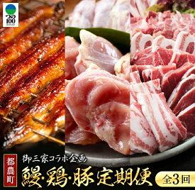 【ふるさと納税】《3か月定期便》お楽しみセット「うなぎ蒲焼3尾&若鶏もも・むね肉4.1kg&豚焼肉3.5kg」合計8kg以上
