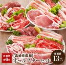 【ふるさと納税】《6か月お楽しみ定期便》県産豚オールスターセット(総重量17kg以上)