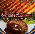 【ふるさと納税】《年末年始お楽しみ企画》うなぎ蒲焼2尾&こだわりハンバーグ(100g×2個)セット