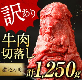 【ふるさと納税】【訳あり】牛肉切落し(煮込み用)計1.25kg《都農町加工品》