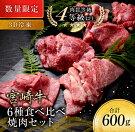 【ふるさと納税】《数量限定》宮崎牛6種食べ比べ焼肉セット【3D冷凍】肉牛牛肉