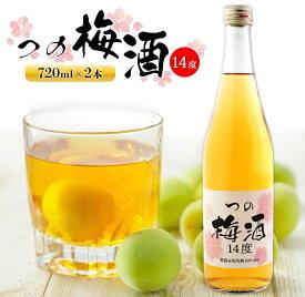 【ふるさと納税】つの梅酒2本セット