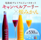 【ふるさと納税】☆極上☆尾鈴産プレミアムジュースセット