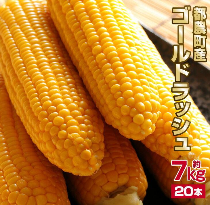 【ふるさと納税】黄金の輝き★『ゴールドラッシュ』5kg(都農町産)
