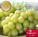 【ふるさと納税】『数量限定』緑の宝石★完熟シャインマスカット2kg(都農町産)