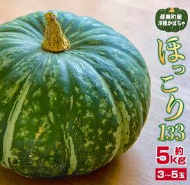 【ふるさと納税】かぼちゃ「ほっこり133」約5kg(都農町産)