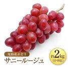 【ふるさと納税】尾鈴産ぶどう『サニールージュ』計2kg(4〜8房)