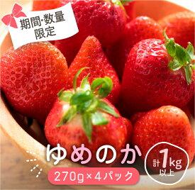 【ふるさと納税】いちご『ゆめのか』270g×4パック(JA尾鈴産)